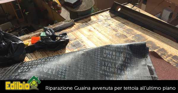 edilbio intervento riparazione guaina divelta tettoia roma